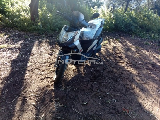 Moto au Maroc GARELLI Xo 200 - 182558