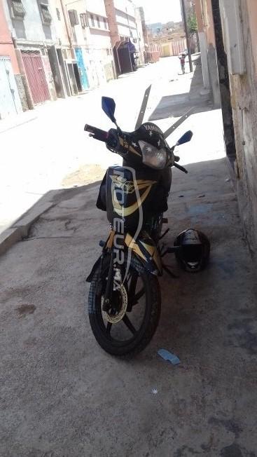 دراجة نارية في المغرب ACCESS-MOTOR Ddr 50 - 233247