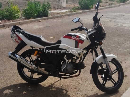 Moto au Maroc ATLAS PANTHER Ybr 50 - 323194