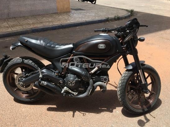 Moto au Maroc DUCATI 125 scrambler - 171363