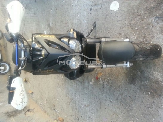 Moto au Maroc YAMAHA Stunt - 137052
