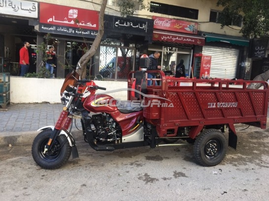 Moto au Maroc TZX Scorpion - 206618