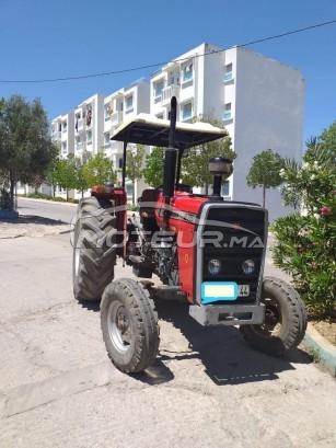 Camion au Maroc MASSEY-FERGUSON275 - 275412
