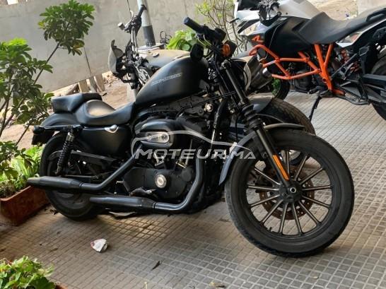 دراجة نارية في المغرب HARLEY-DAVIDSON Iron 833 iron 833 - 340152