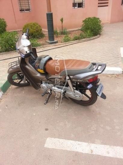 دراجة نارية في المغرب DOCKER C50 - 227609