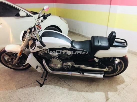 Moto au Maroc HARLEY-DAVIDSON Autre Harley davidson vrod muscle - 215703