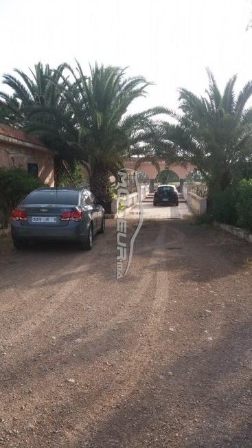 سيارة في المغرب CHEVROLET Cruze - 175327
