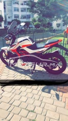 دراجة نارية في المغرب CIMATTI Bulk Gt - 320654