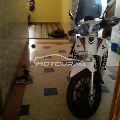 شراء الدراجات النارية المستعملة DOCKER C50 في المغرب - 350903