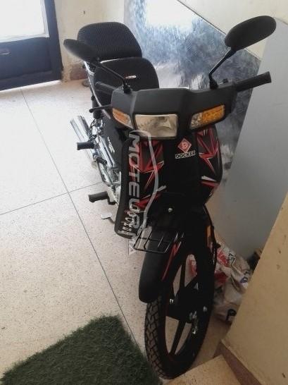 دراجة نارية في المغرب DOCKER C50 - 234522
