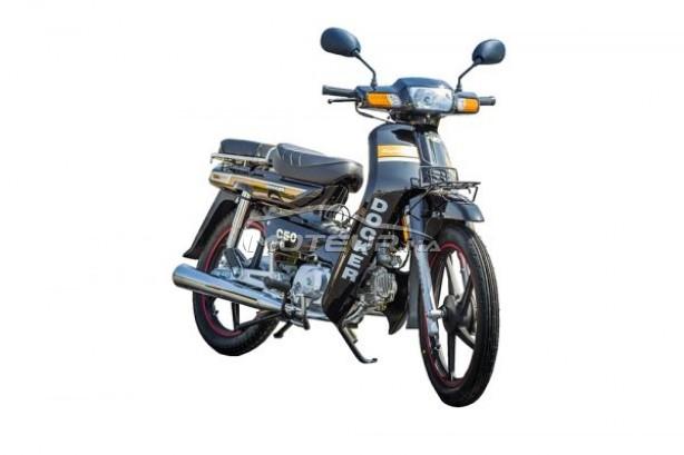 Moto au Maroc DOCKER C50 - 230230