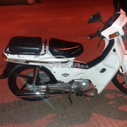 Moto au Maroc DOCKER C90 - 207117