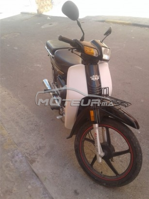 Moto au Maroc DOCKER C90 - 222913
