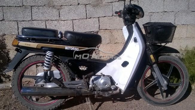 Moto au Maroc DOCKER C90 - 189535