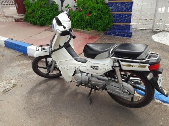 دراجة نارية في المغرب - 227106
