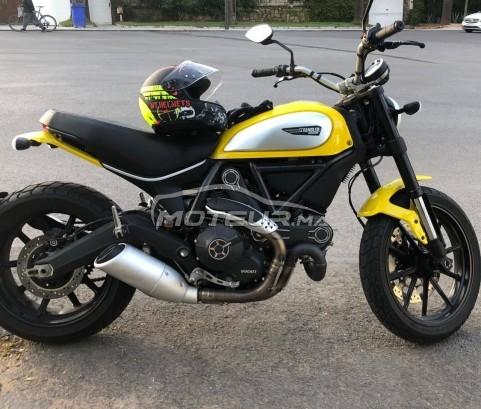 دراجة نارية في المغرب DUCATI 800 sport Scrambler - 279311