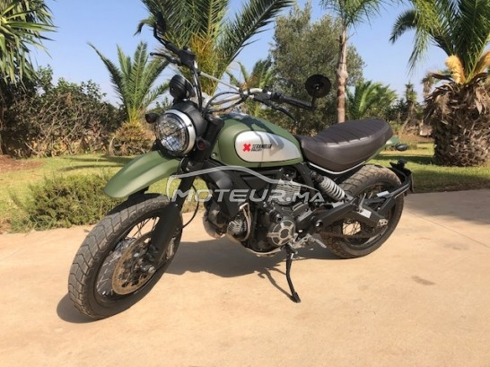Moto au Maroc DUCATI Scrambler 800 urban enduro - 306450
