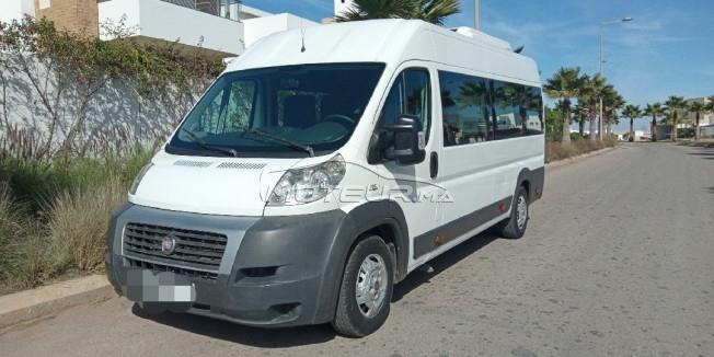 سيارة في المغرب maxi fourgon vitrée - 246208