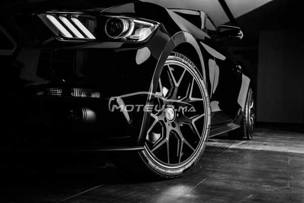FORD Mustang 2.3l ecoboost ghost edition 1 of 1 occasion 924437