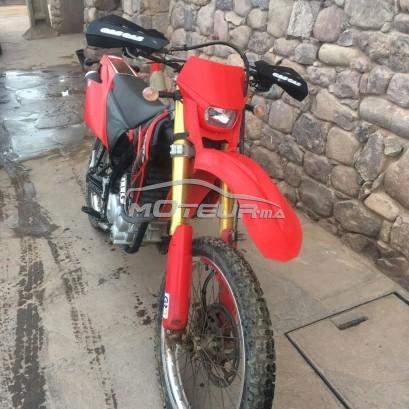 Moto au Maroc GAS-GAS Enducross ec 300 - 173188