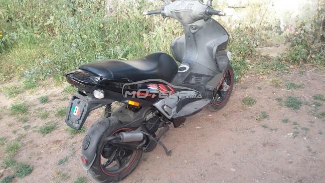 Moto au Maroc GILERA 50 runner racing rep - 208601