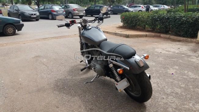 دراجة نارية في المغرب HARLEY-DAVIDSON Sportster 1200 - 215449