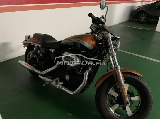 دراجة نارية في المغرب HARLEY-DAVIDSON Sportster 1200 custo Sportster 1200 ca - 319414