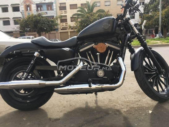 HARLEY-DAVIDSON Sportster 883 Iron occasion