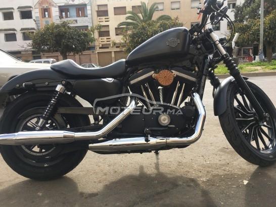 دراجة نارية في المغرب HARLEY-DAVIDSON Sportster 883 Iron - 231840