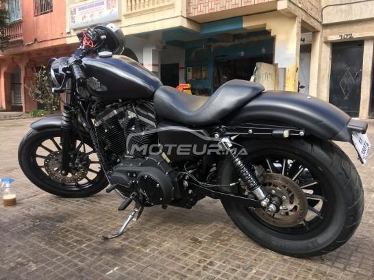 دراجة نارية في المغرب HARLEY-DAVIDSON Sportster 883 - 231840
