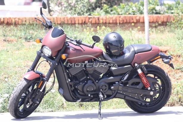 دراجة نارية في المغرب HARLEY-DAVIDSON Street rod 750 Xg750a - 316663