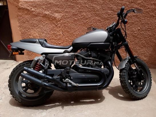 دراجة نارية في المغرب HARLEY-DAVIDSON Xr 1000 - 229312