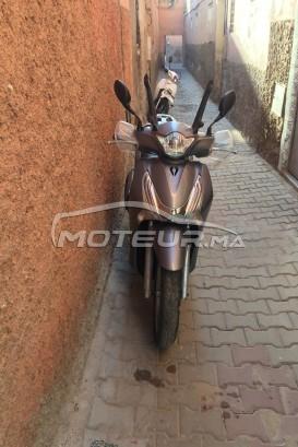 دراجة نارية في المغرب - 239890