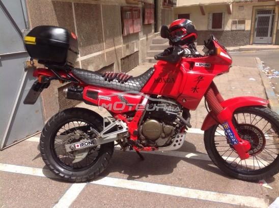 Moto au Maroc HONDA Nx 650 dominator Moto honda dominator 650 cc - 170262