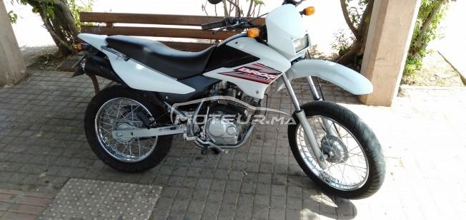 Moto au Maroc HONDA Bros - 283203