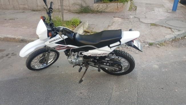 دراجة نارية في المغرب هوندا بروس - 214525