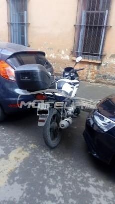 دراجة نارية في المغرب هوندا سب 125 ت - 175445