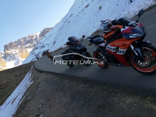 دراجة نارية في المغرب HONDA Cbr 1000 rr fireblad - 314785
