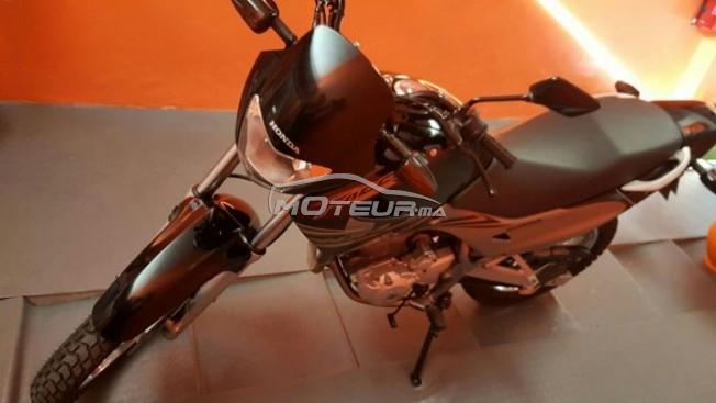دراجة نارية في المغرب هوندا نكس 4 فالكون - 154559