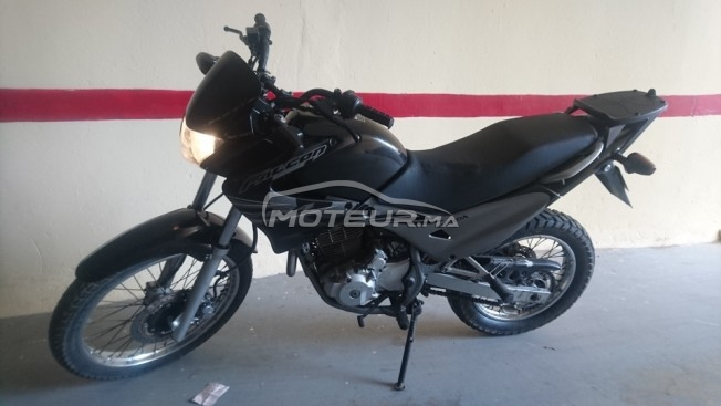 Moto au Maroc HONDA Nx 4 falcon - 234623