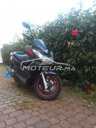 Moto au Maroc HONDA Pcx - 279996