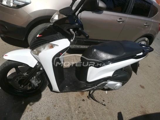دراجة نارية في المغرب - 240102