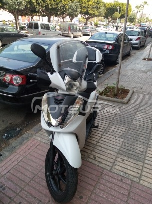Moto au Maroc HONDA Sh 300i Robo sport - 267427