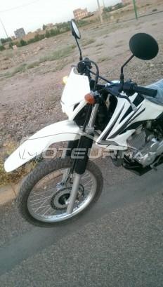 دراجة نارية في المغرب هوندا كسر 250 تورنادو - 229244