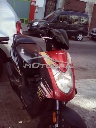 Moto au Maroc KYMCO Agility 50 - 173560