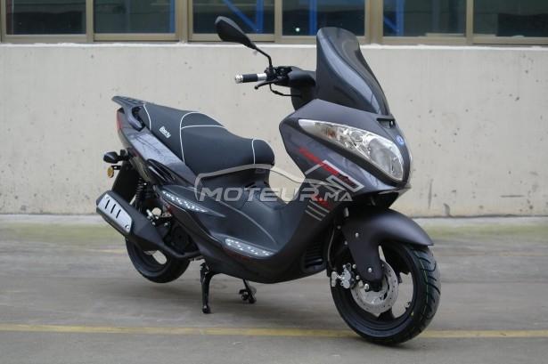 دراجة نارية في المغرب LIBERTY Fantome gt - 255755