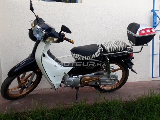 دراجة نارية في المغرب DOCKER C50 - 229553