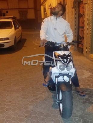 دراجة نارية في المغرب MBK Stunt - 212482