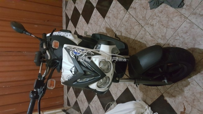 Moto au Maroc MBK Stunt - 143831