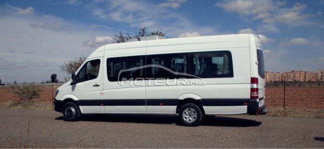 سيارة في المغرب MERCEDES Sprinter - 255058